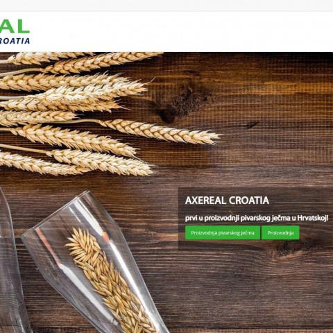 axereal.com